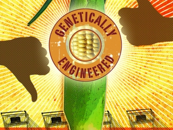 Genetically Engineered Food Labeling