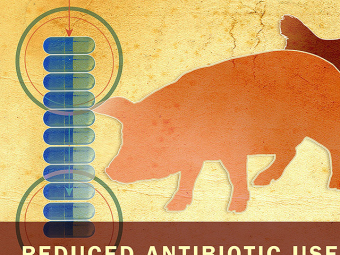 Denmark's reform of antibiotic use…